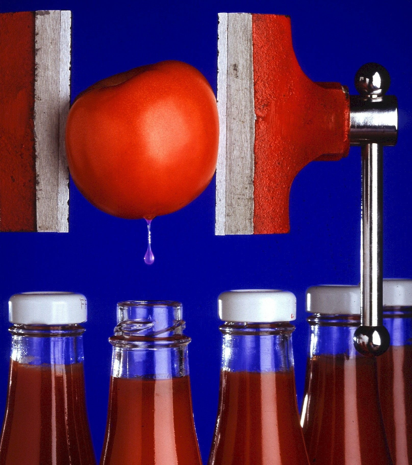 practice listening English online about tomato ketchup