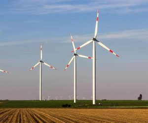 practice english with stories about wind farm